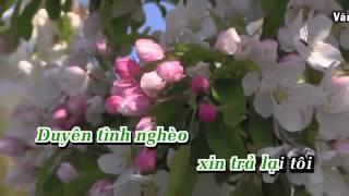 Karaoke HD TRONG HAI CHON MOT