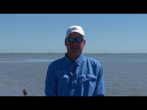 Texas Fishing Tips Fishing Report June 4 2020 Aransas Pass Area With Capt Doug Stanford