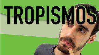 Botânica - Movimentos Vegetais: Tropismos