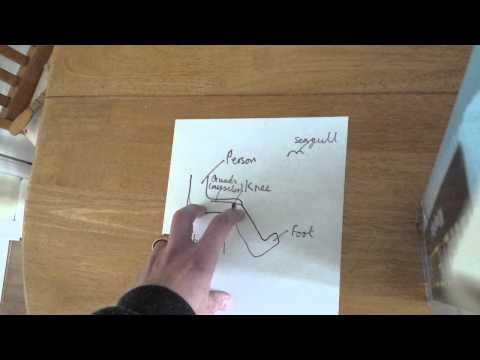 Biomechanics basics.  Of moments and forces