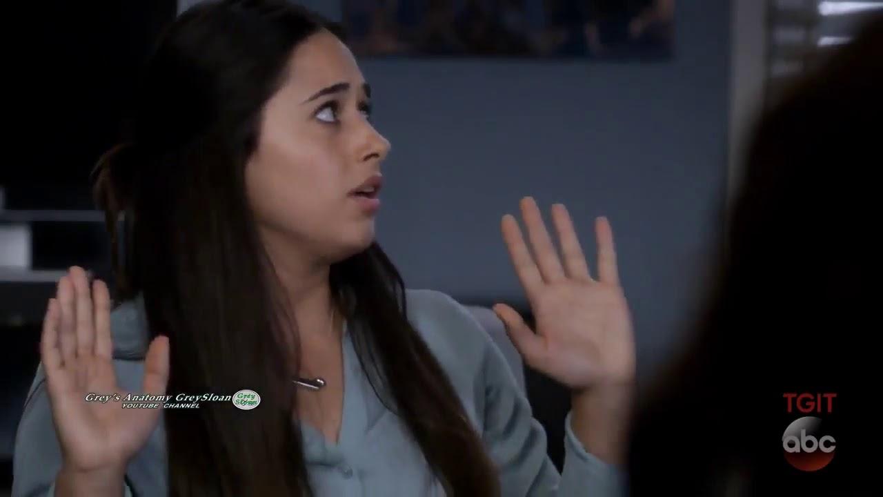 Grey\'s Anatomy 14x04 Webber & Bailey Interview Prospective New ...