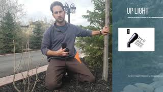 How To Install Low Voltage Landscape Lighting Tree Lighting Youtube