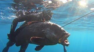 Ψαροντούφεκο ΡΟΦΟΣ 27KG-Spearfishing Sakis Tsonis Dusky Grouper 27KG