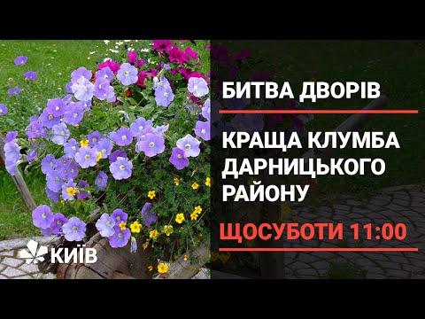 Битва жителів Дарницького району за найкращу клумбу