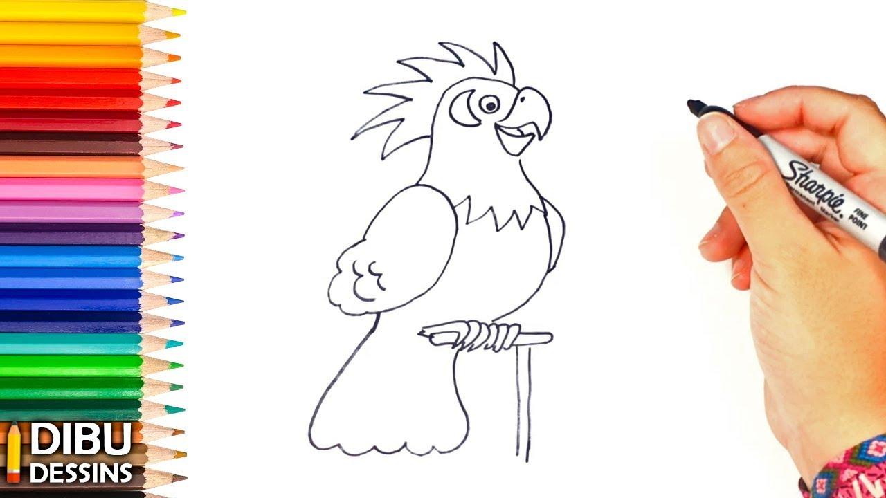Comment Dessiner Un Perroquet Youtube