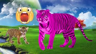 Learn Colors With Tiger, Learn Animals Name and Sound For Kids Nursery Rhymes Song For Children