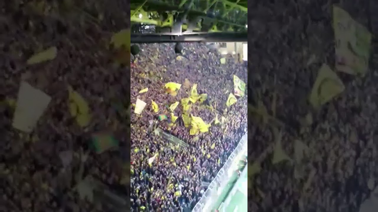 Dortmund Fängesänge Dortmund gegen Freiburg