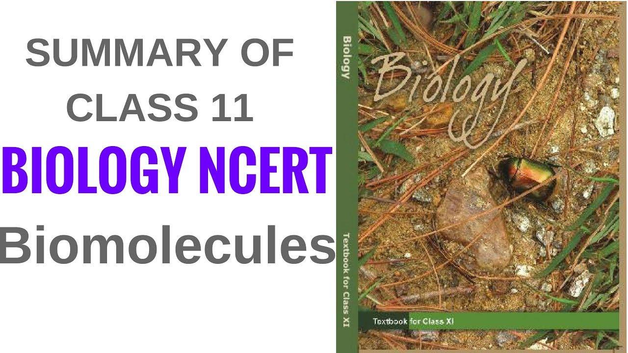 Summary of class 11 biology ncert biomolecules youtube summary of class 11 biology ncert biomolecules malvernweather Choice Image