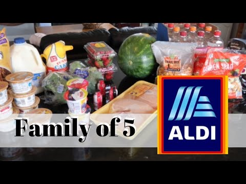 Grocery Haul On A Budget (2019) | ALDI Grocery Haul | Weekly Meal Plans