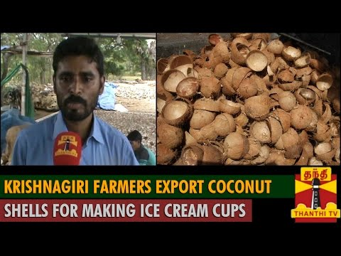 Krishnagiri Farmers export Coconut Shells for making Ice cream Cups