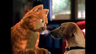Гарфилд и Одди первый раз вместе дома - момент из фильма Гарфилд  Di Cartoons minifilms