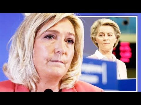 Marine Le Pen's adviser unravels EU vaccine scandaI 'EVERYTHING Brussels TOUCHES FAlLS'