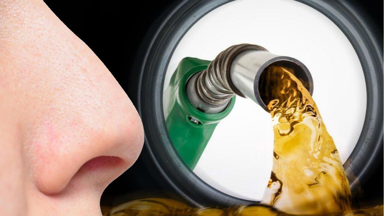 25 Datos Inútiles #18 | ¿Te gusta el olor a gasolina? - YouTube
