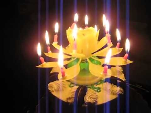 The Crazy Flower Candle