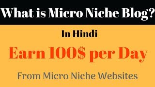 What is Micro Niche Blog and How to Make a Micro Niche Site in Hindi