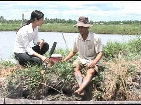 KVS Năm 1 (CT.Số 42) Hoàn cảnh Cha Con anh Nguyễn Văn Tèo, Thới Bình, Cà Mau