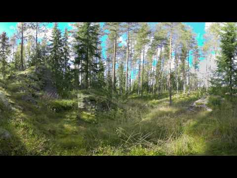 VR tour in Nordic forests part 3: Our passion for nature