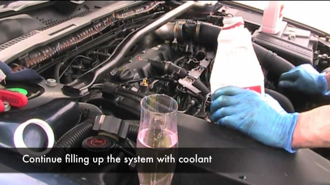 Coolant and Thermostat Change  YouTube
