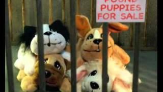 Robot Chicken Season 3 Trailer