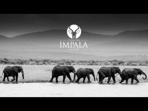 Présentation Fondation Impala Avenir sur Radio Notre Dame