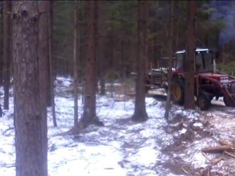 мтз для леса - traktorservice.ru