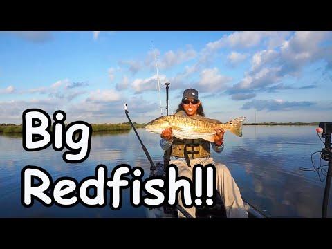 Kayak Fishing For Redfish In Venice Louisiana - The ANGLR Tour