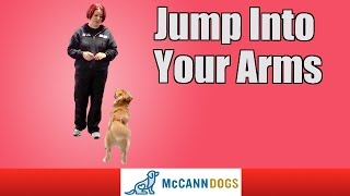 Teach Your Dog To Jump Up Into Your Arms