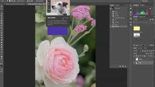 Adobe Photoshop CC 2015 | Classroom in a Book: Lesson 1 Tips and Tricks