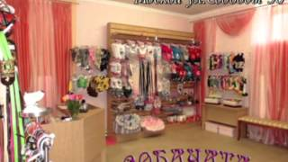 Магазин Sobachata.ru(, 2013-08-31T17:21:39.000Z)
