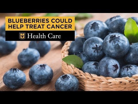 Blueberries Give A Boost To Cervical Cancer Therapy
