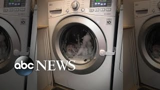 Parents say toddler got stuck in washing machine