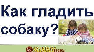 как гладить собаку deti i sobaki dressirovka