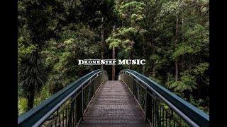 Human DroneStep Chill Music - Corona del Mar, CA