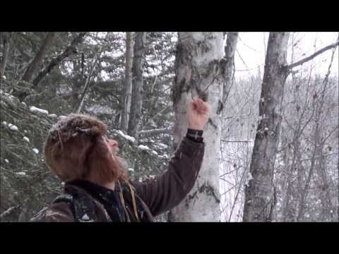 Winter Wilderness Survival Food