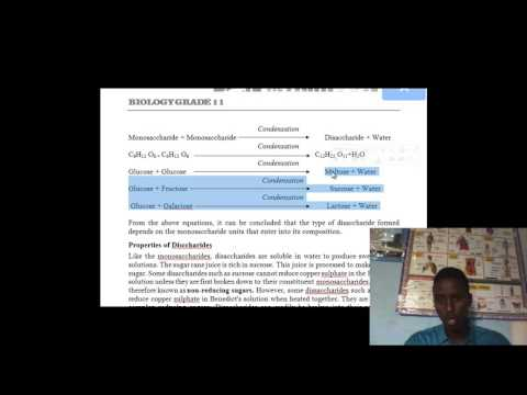 biology grade 11 chapter two nutrition and degistion somali by bare myariisow