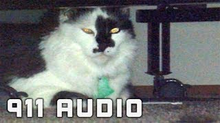 'My Cat Attacked...' & That's When This 911 Call Gets Hilarious [AUDIO]