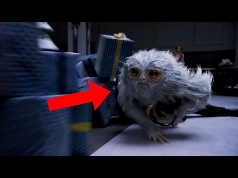 Best scenes in Fantastic Beasts and Where to Find Them (2/5)