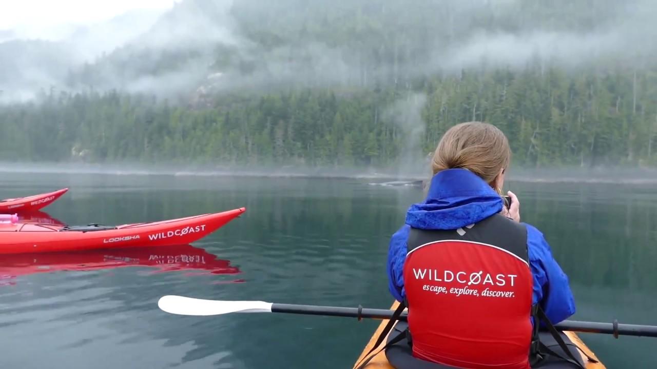 wildcoast sea kayaking vancouver island and surrounding area - youtube