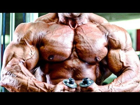 Fouad Abiad - DON'T WASTE ANY WORKOUT - Bodybuilding Motivation