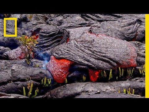 Follow a Lava River's Mesmerizing Path of Destruction   Short Film Showcase