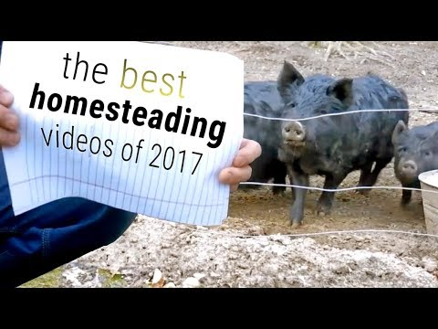 Top 10 Homesteading Videos of 2017