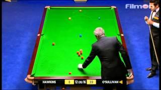 Ronnie O'Sullivan vs Barry Hawkins - WSC 2013 Final - Last session