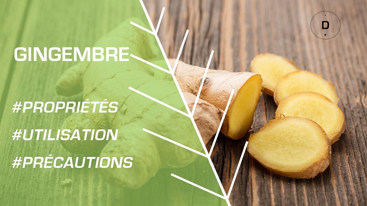 comment utiliser le gingembre ? - phytothérapie - youtube
