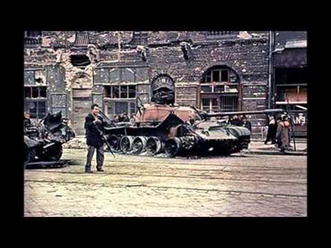 Névtelenül- Hősök vére 1956 / Magna Hungaria