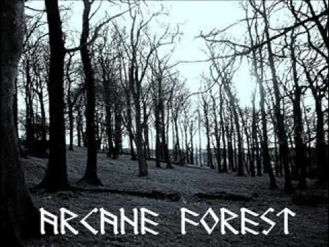 Arcane Forest : The Coming Storm