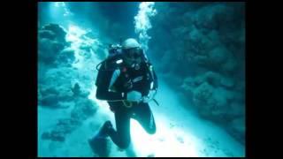 Egypt dive.mp4