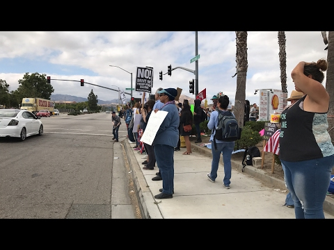 LIVE AT THE ANTI SHARIA / COUNTER PROTEST