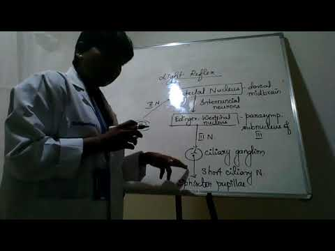 Dr.Rajarathna's Ophthalmology Video - Neuro-ophthalmology - Pupillary light refex