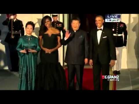 Michelle Obama Wears Vera Wang Gown at White House Dinner,