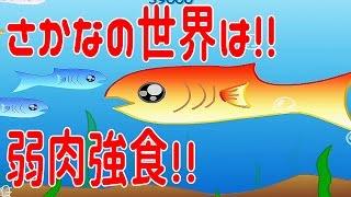 魚を食ってでかくなれ!! 魚の世界は弱肉強食!? - FISHY 実況プレイ